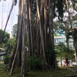 Ho Chi Minh City Museum 09