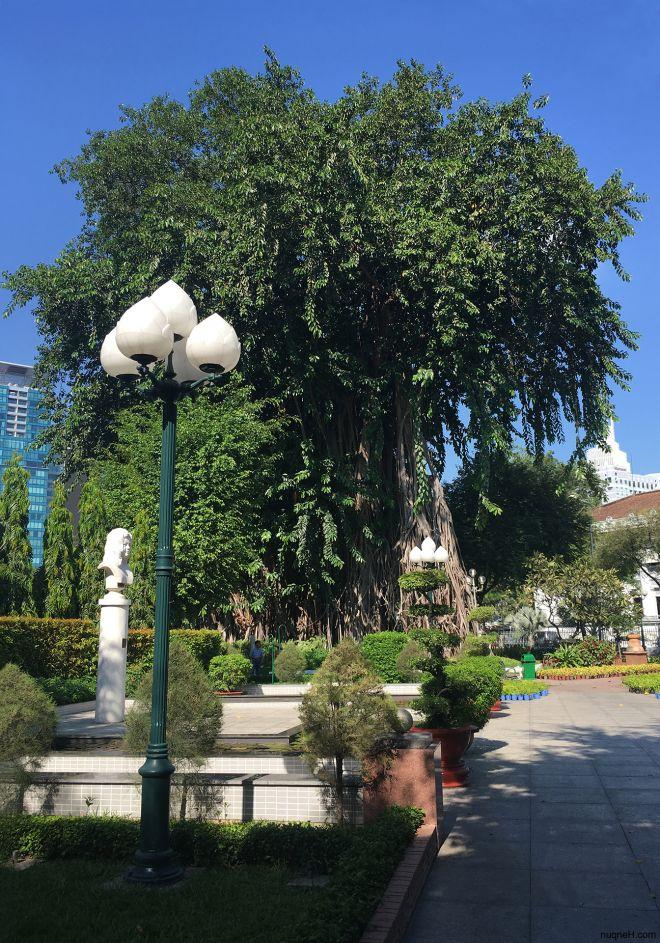 Bach Tung Diep Park