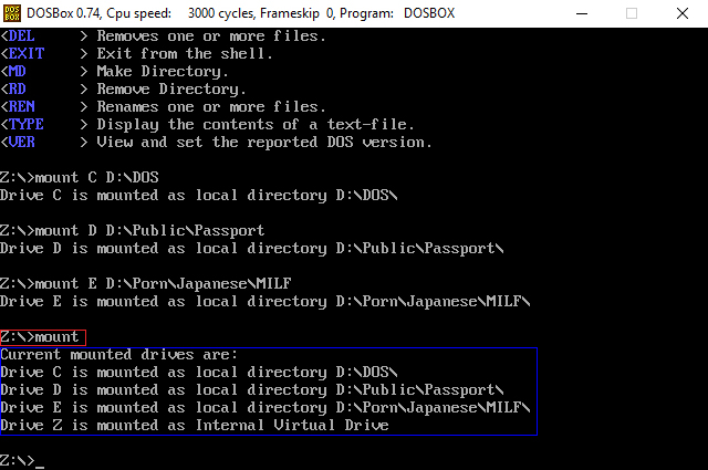 DOSBox check mounted drives on Windows
